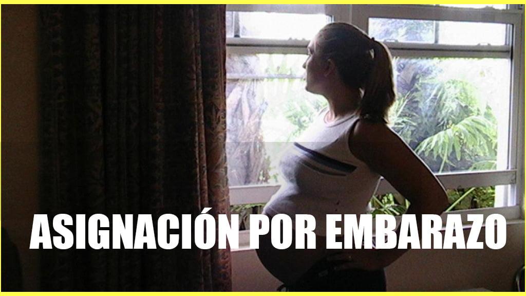 Calendario de cobro Asignación por Embarazo JULIO