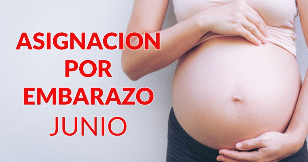 Asignación por Embarazo JUNIO