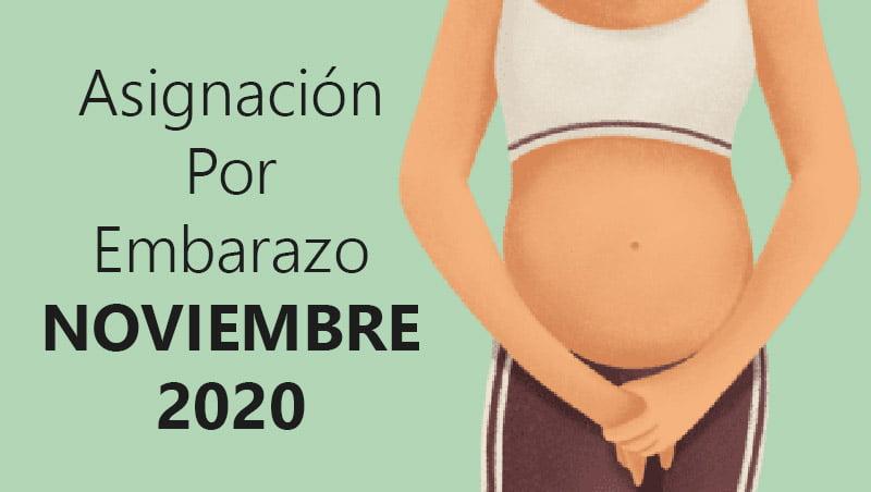 Asignación Por Embarazo noviembre 2020