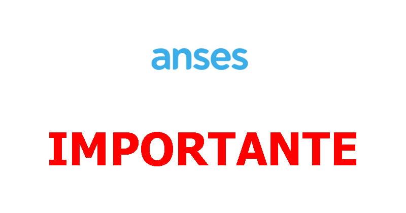 acceder a beneficios ANSES